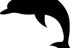 a dolphin silhouette