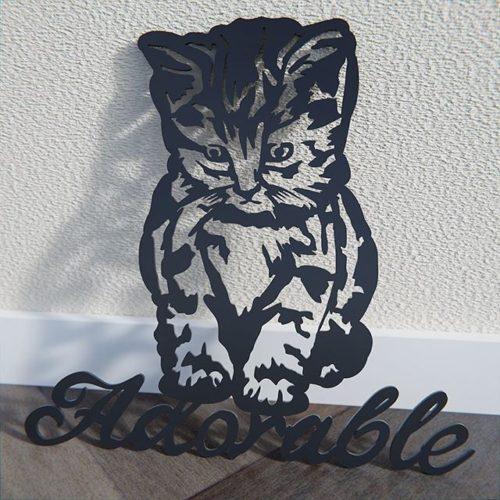 Cat - Kitten